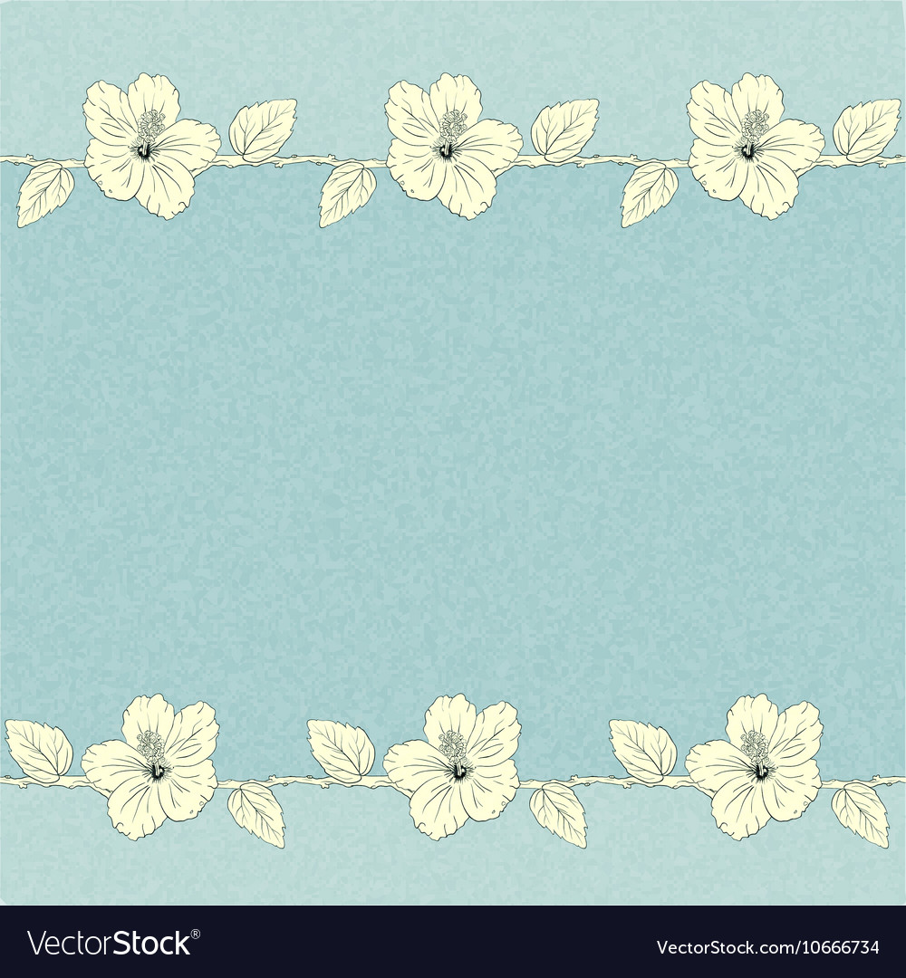 Template With Hibiscus Flowers Royalty Free Vector Image