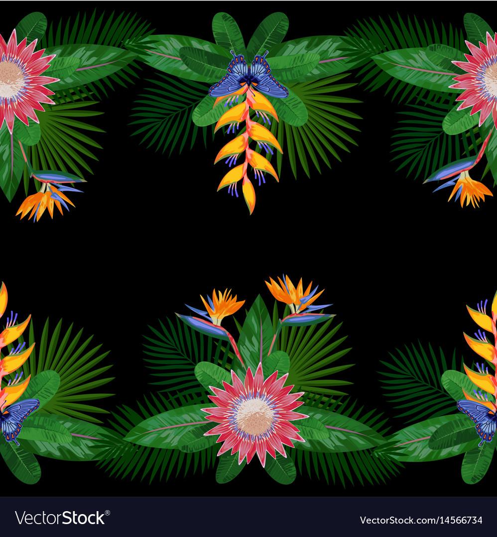 Tropical double seamless border vector image