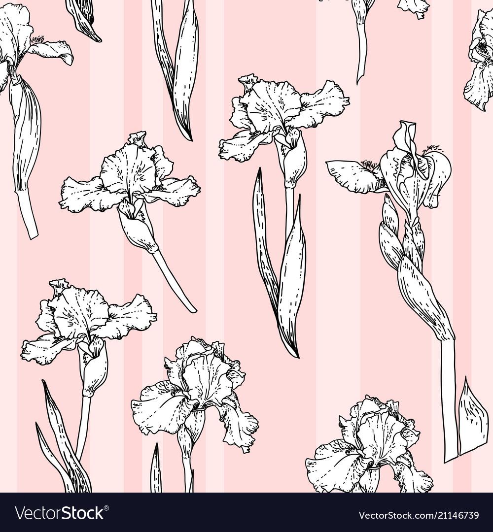 Pink iris pattern