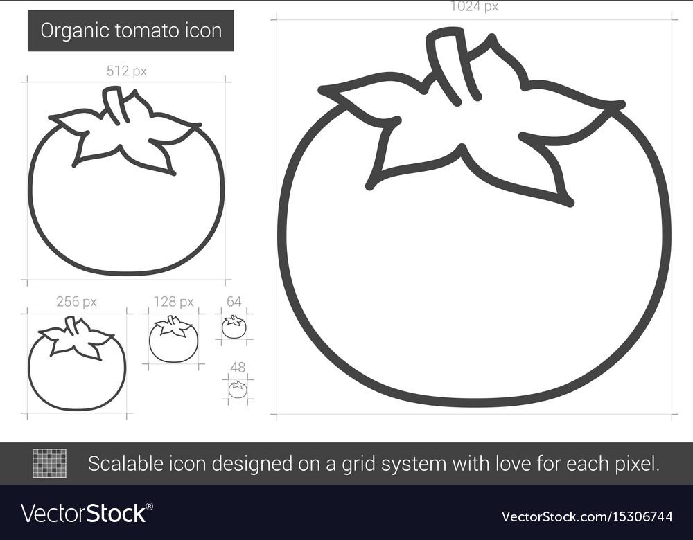 Organic tomato line icon