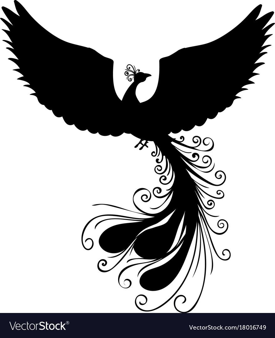 Phoenix bird silhouette ancient mythology fantasy