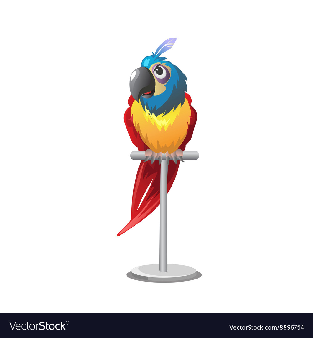 Tropical colorful parrot sitting on perch