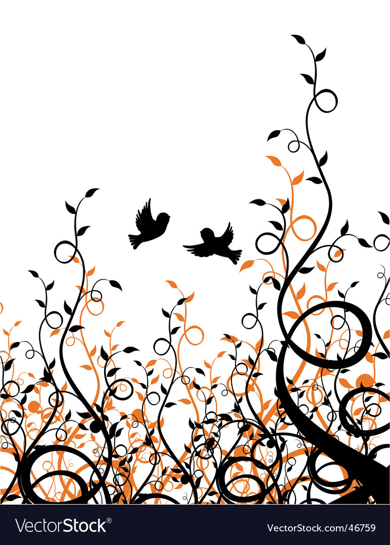 Sparrows on ivy vector image