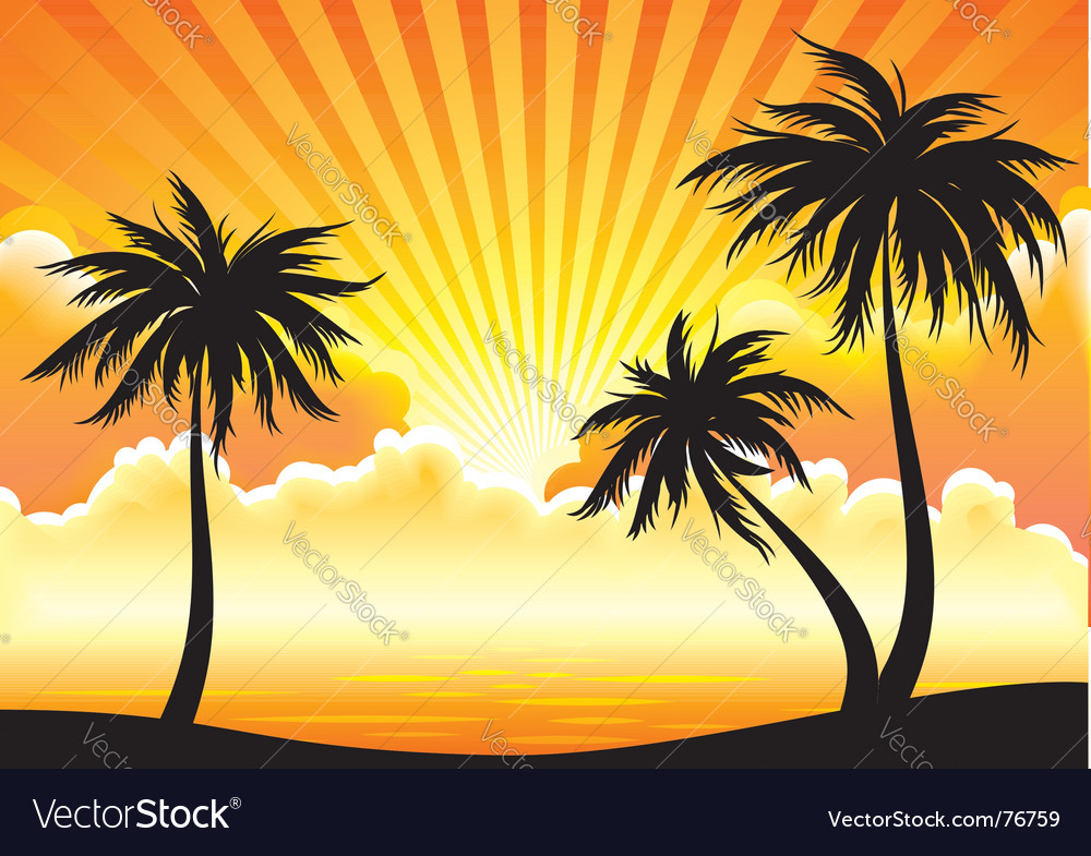 Sunset coastline