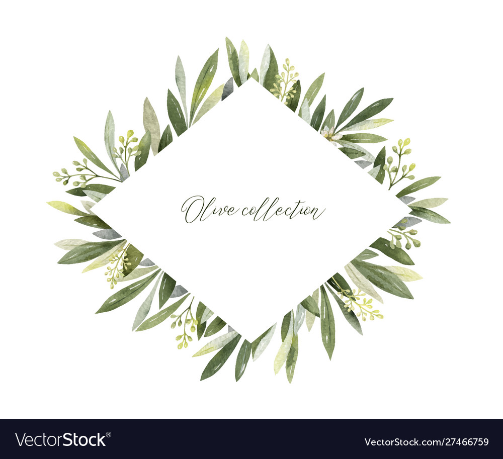 Watercolor frame olive branches and