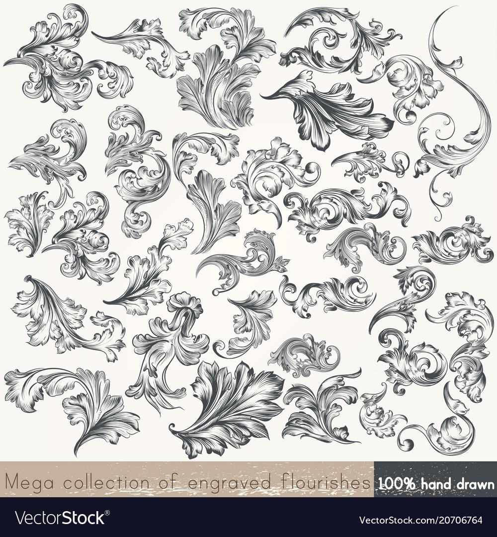 Set of swirl elements for design calligraphic