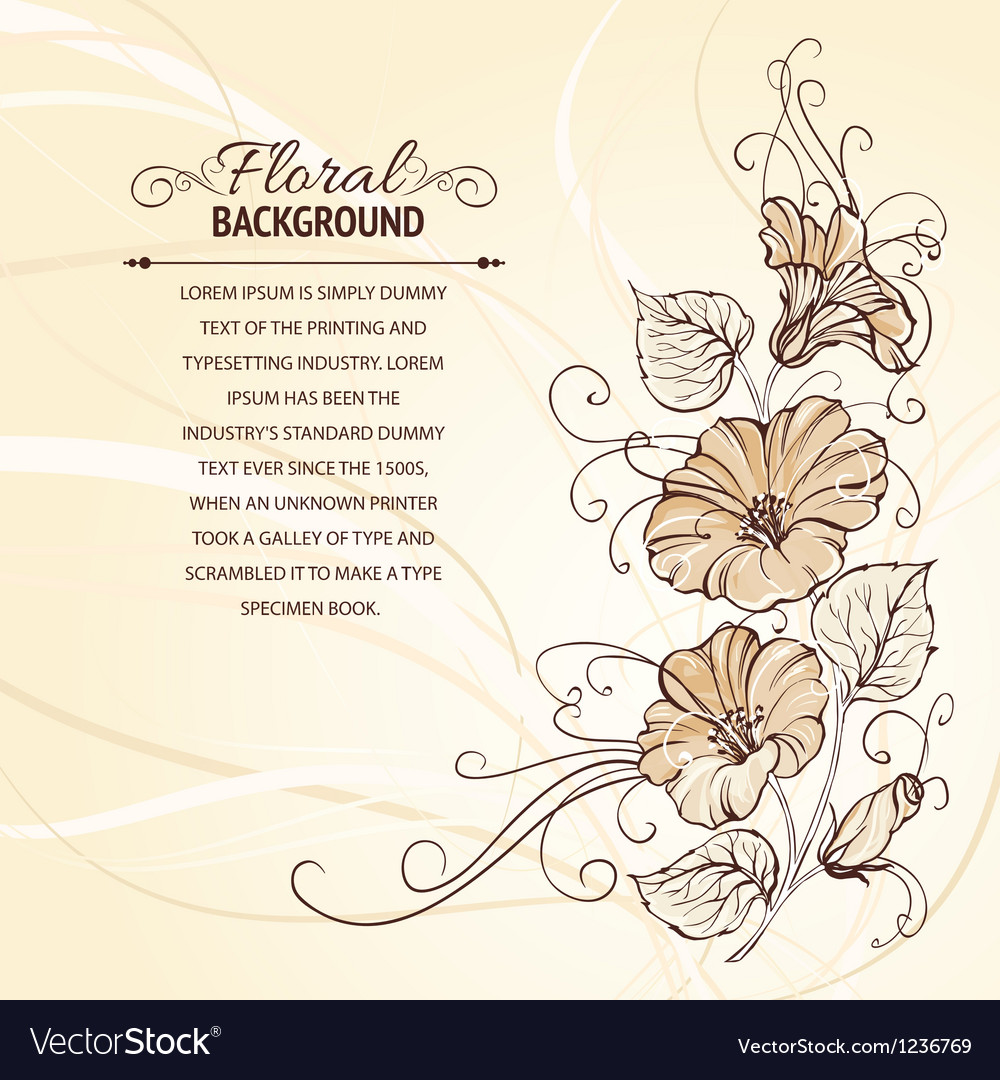 Bindweed on a sepia background vector image