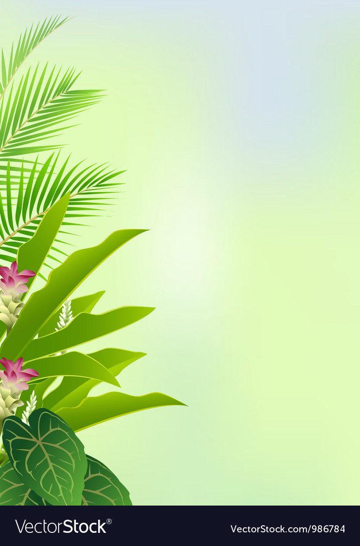 Beauty decoration with tropical plant