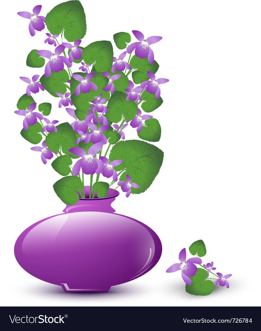 Bunch of wild violet