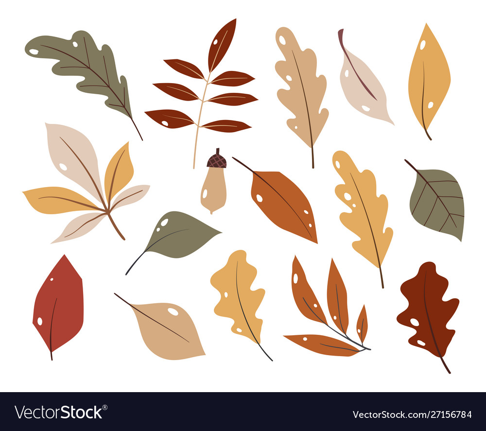 Forest leaf hand drawn set colorful