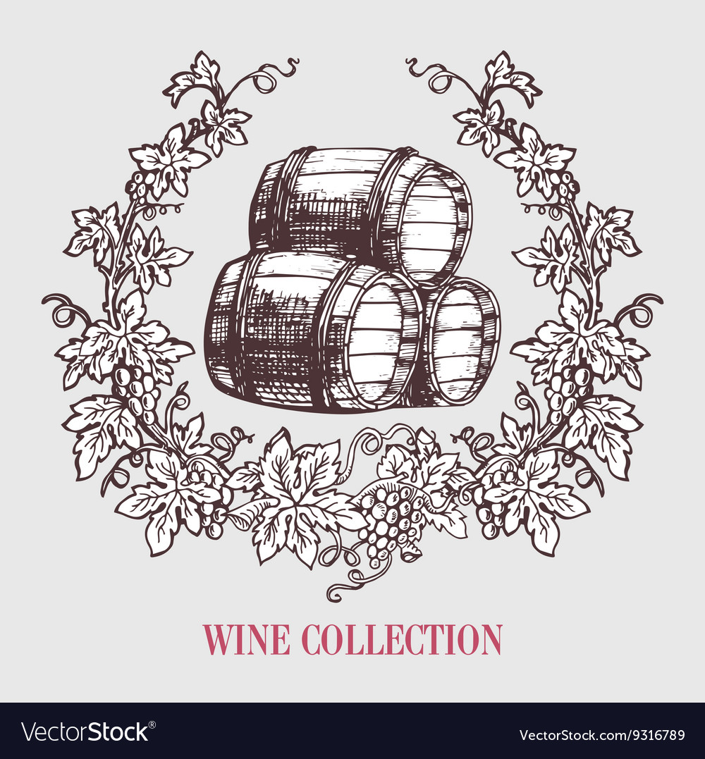 Wine and winemaking vintage vector image