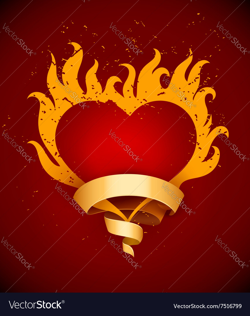 Burning heart with fire flames vector image