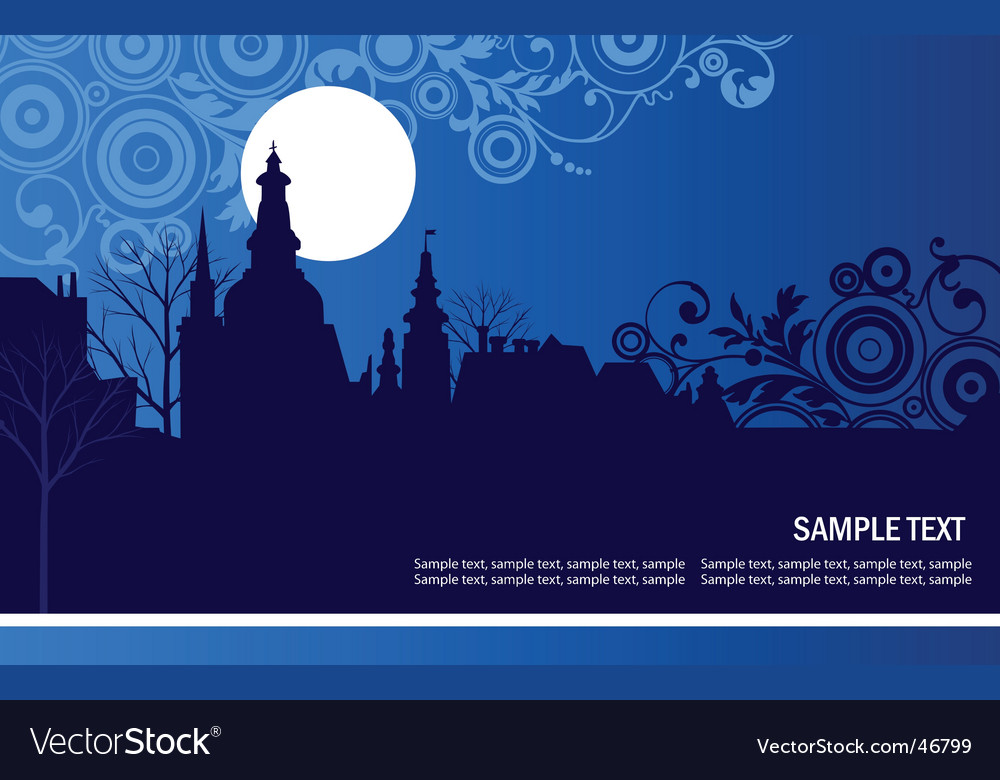 Night panorama of the city vector image