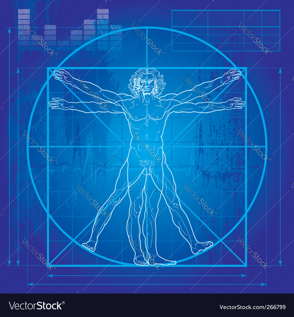 Vitruvian man blueprint version royalty free vector image vitruvian man blueprint version vector image malvernweather Choice Image