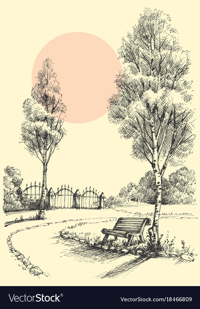 Garden Artistic Drawing An Alley In The Park Vector Image