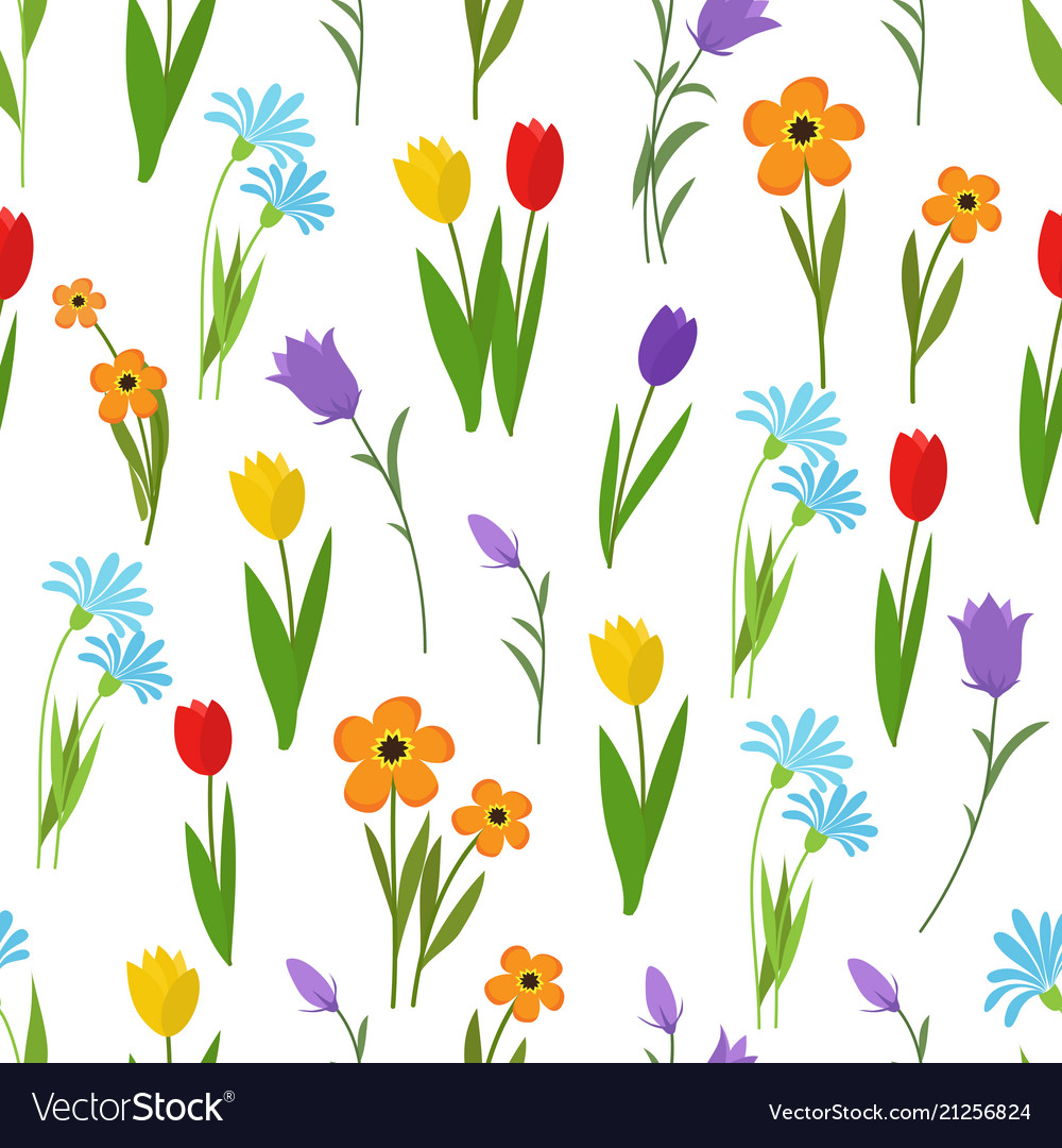 Spring and summer garden and wild flowers seamless vector image