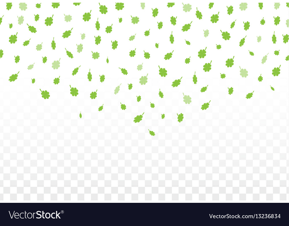 Green clover leaves vector image