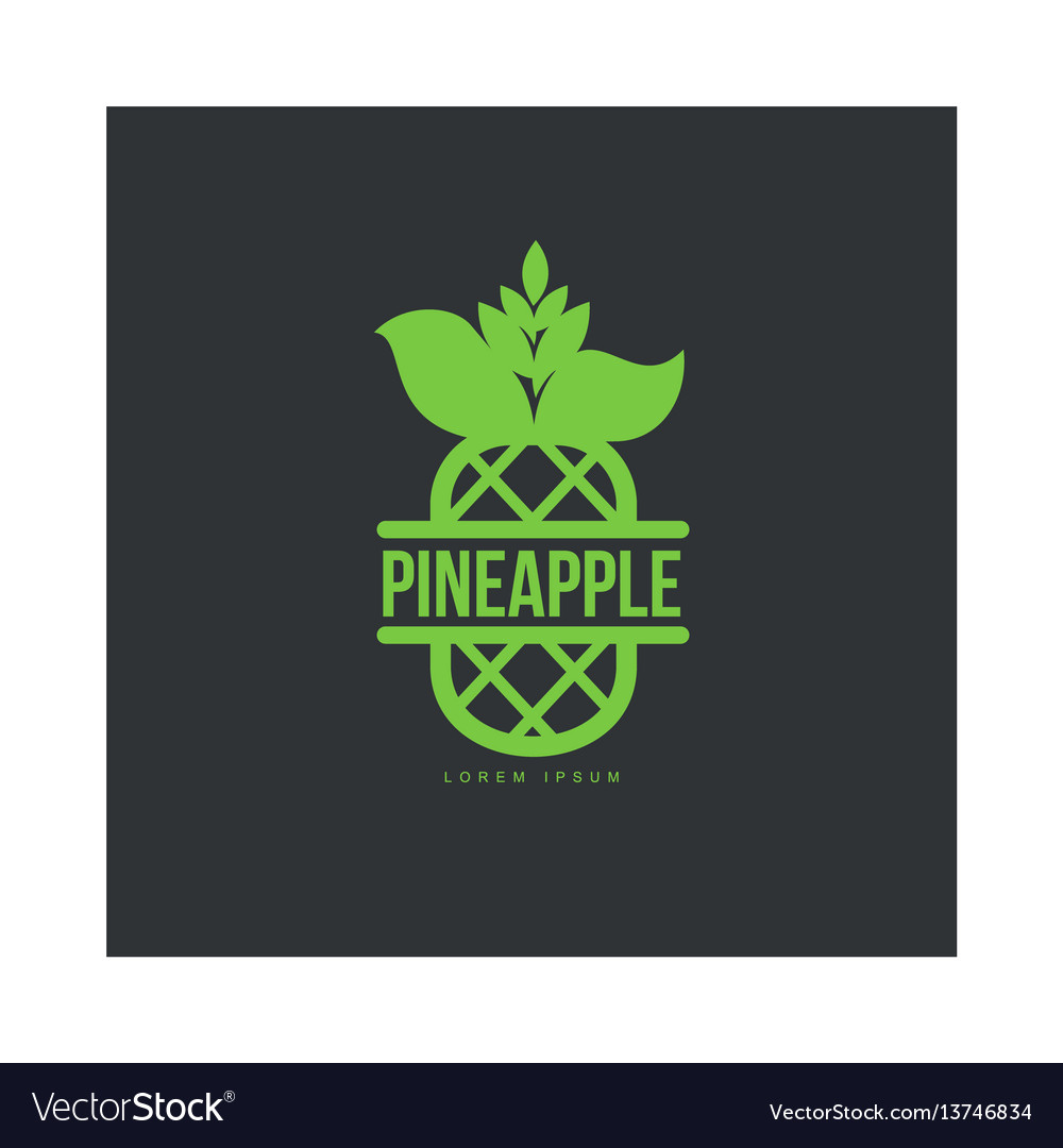 Two tone assymmetric graphic pineapple logo