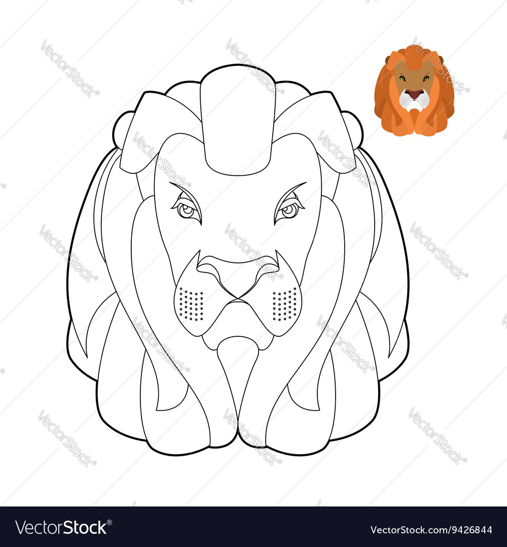 Lion coloring book Head of predator with shaggy