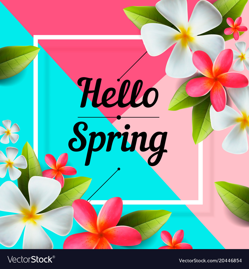 Hello spring background with colorful flowers