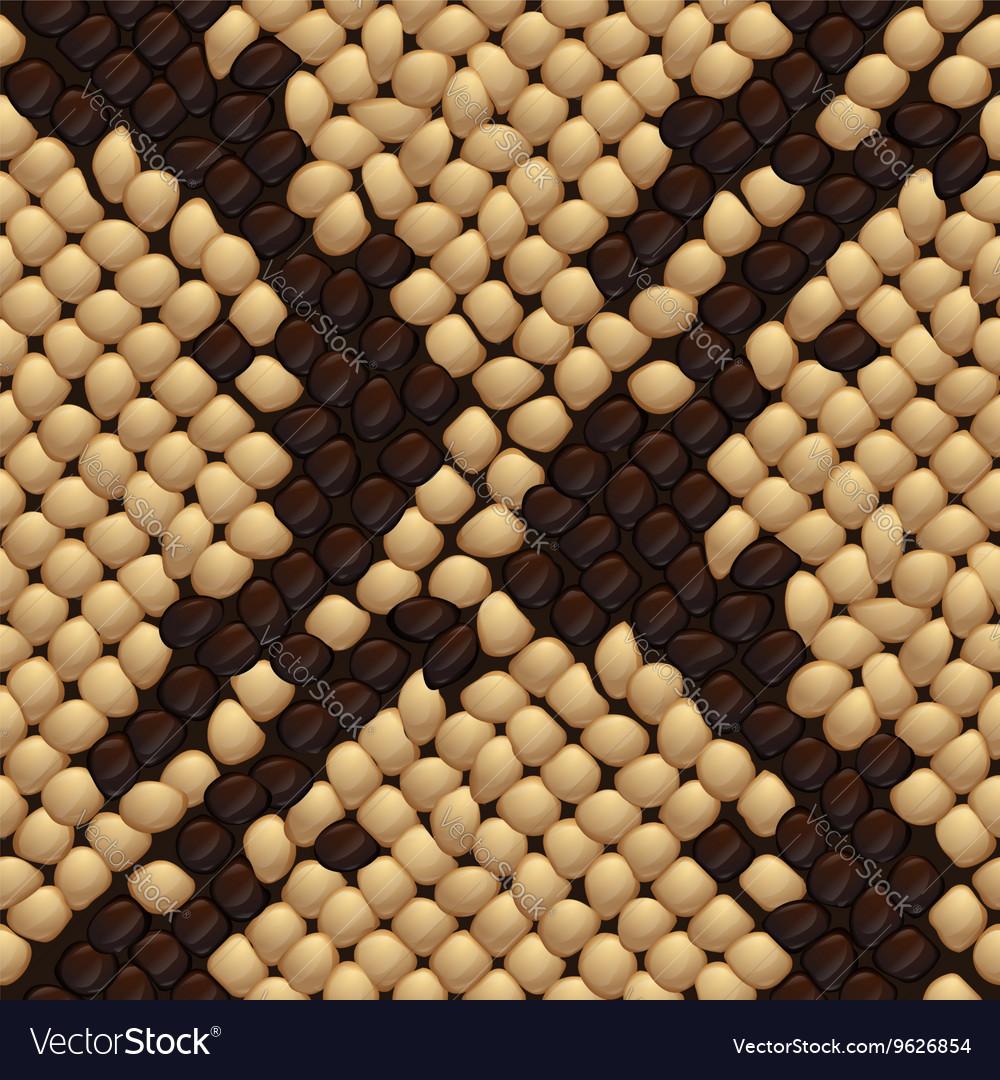 Seamless snake skin texture Royalty Free Vector Image