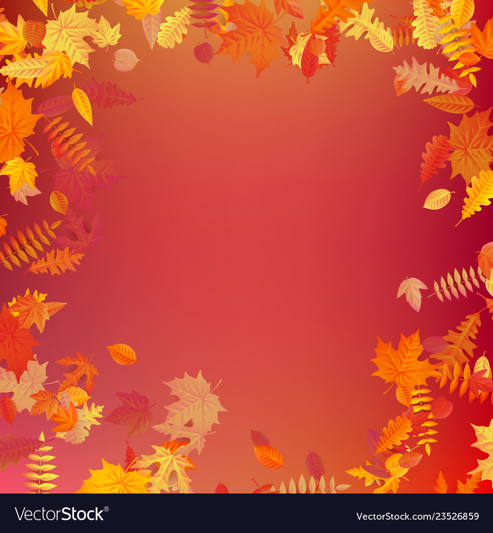 Autumn template layout decorate with leaves eps