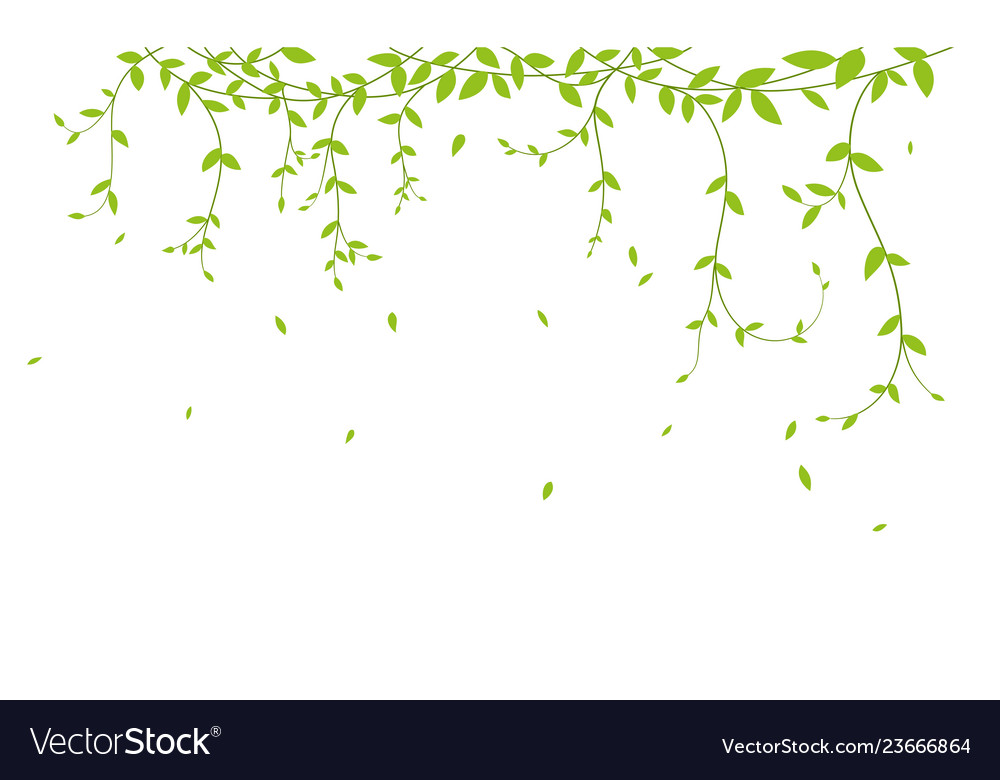 Beautiful tree branch with birds silhouette