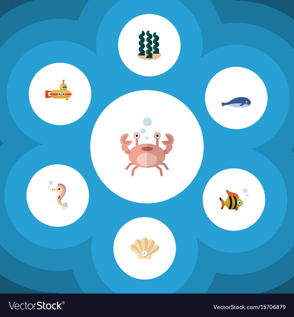 Flat icon nature set of alga hippocampus cancer