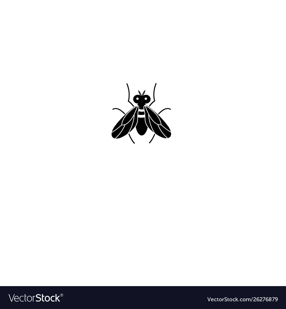 Graphics silhouette fly icon