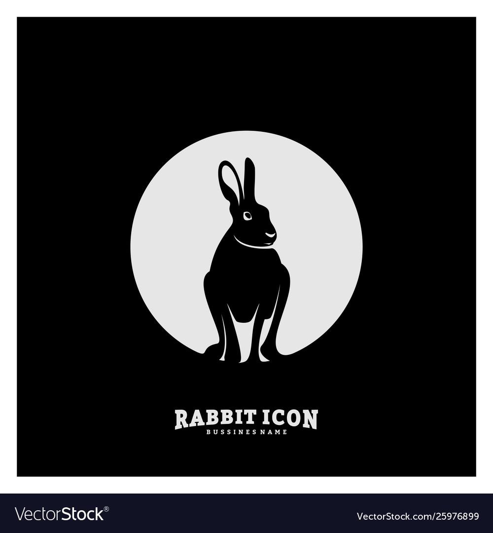Rabbit logo design rabbit logo concepts