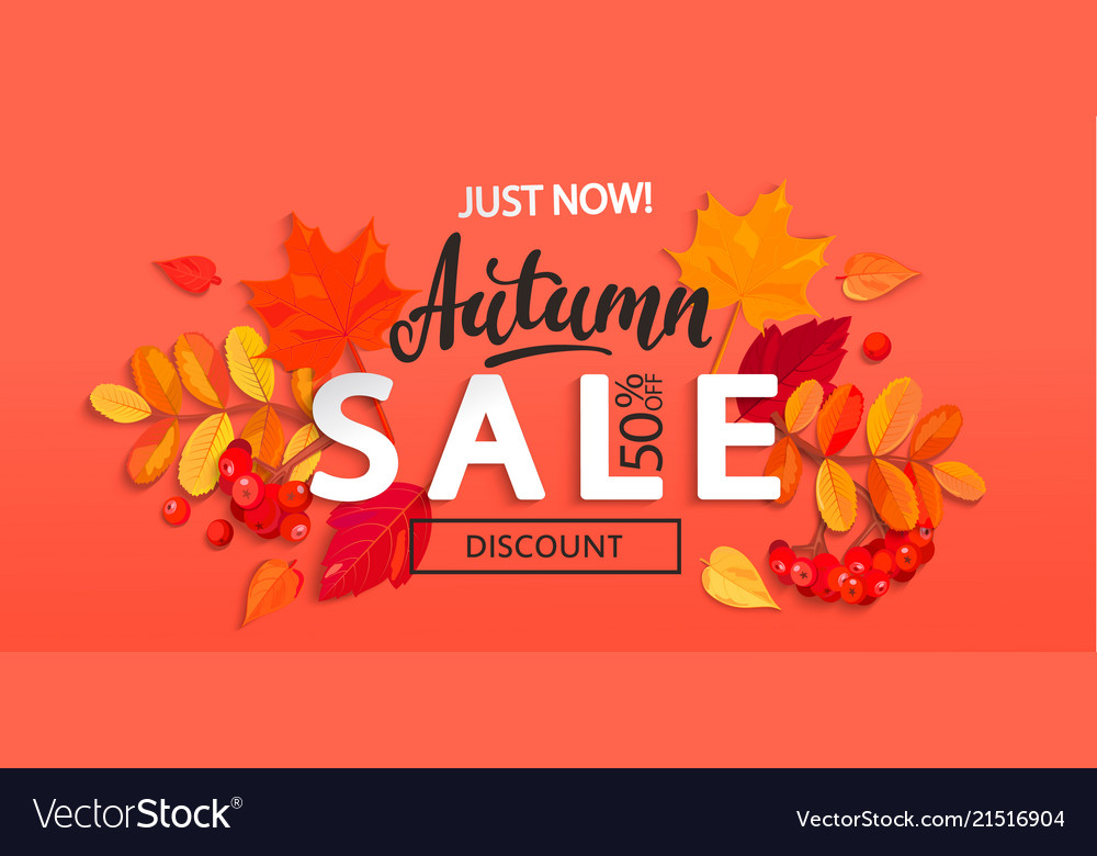 Banner for autumn sale with fall leaves