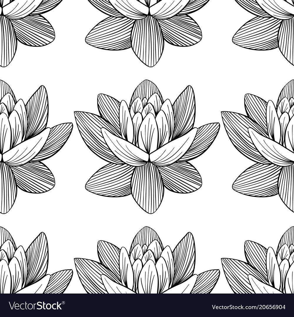 Lotus lily water pattern