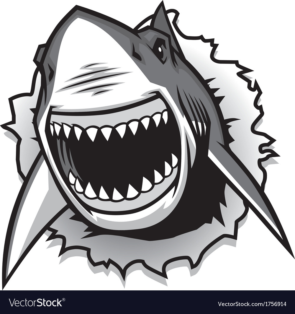 Great White Shark ripping with opened mouth Vector Image for shark drawing open mouth  53kxo