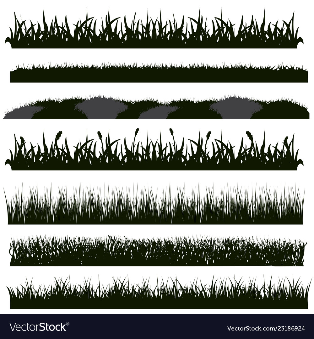 Black grass silhouettes vector