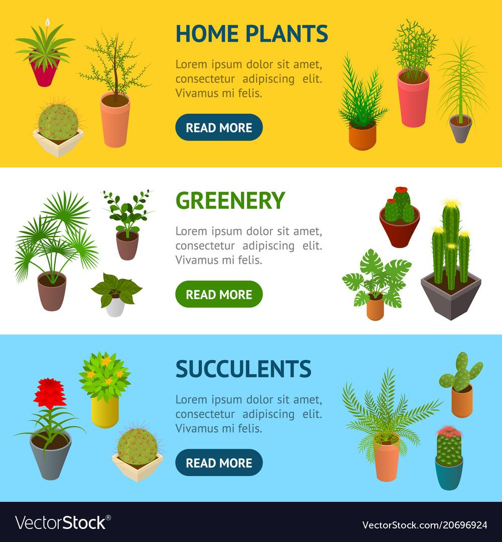 Green plants in pot banner horizontal set 3d