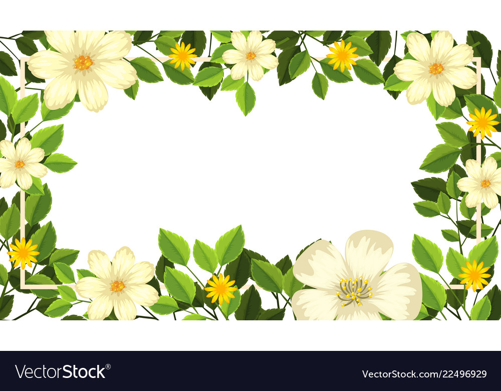Beautiful Flower Blank Card Template Vector Image