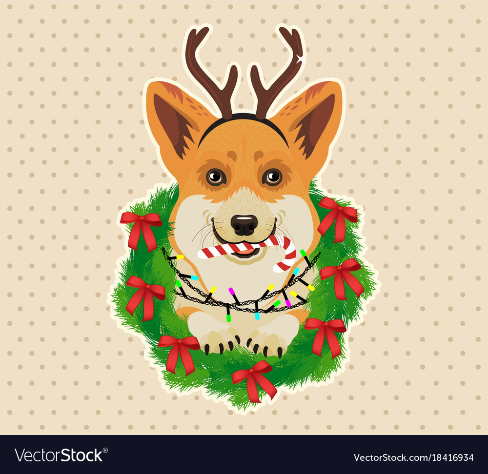Christmas, Sweater & Elf Vector Images (48)