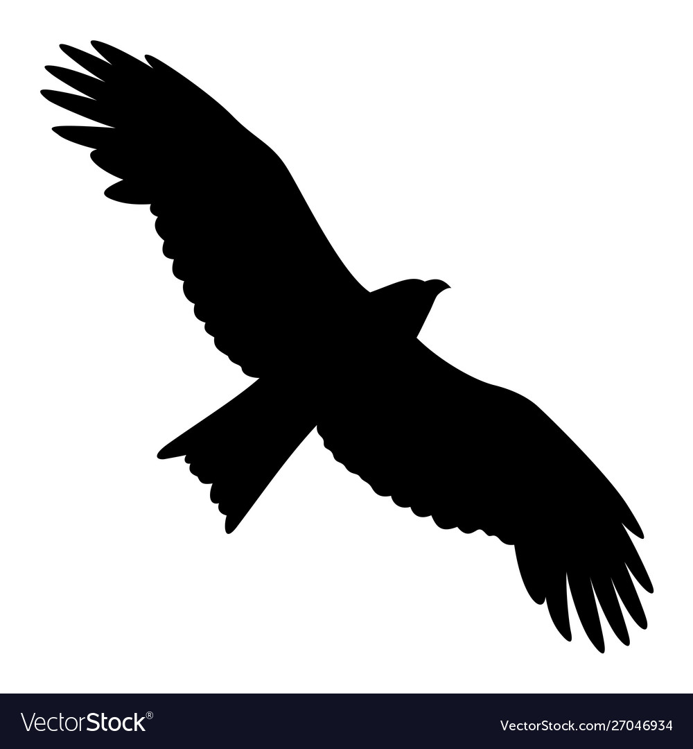 Eagle silhouette 011
