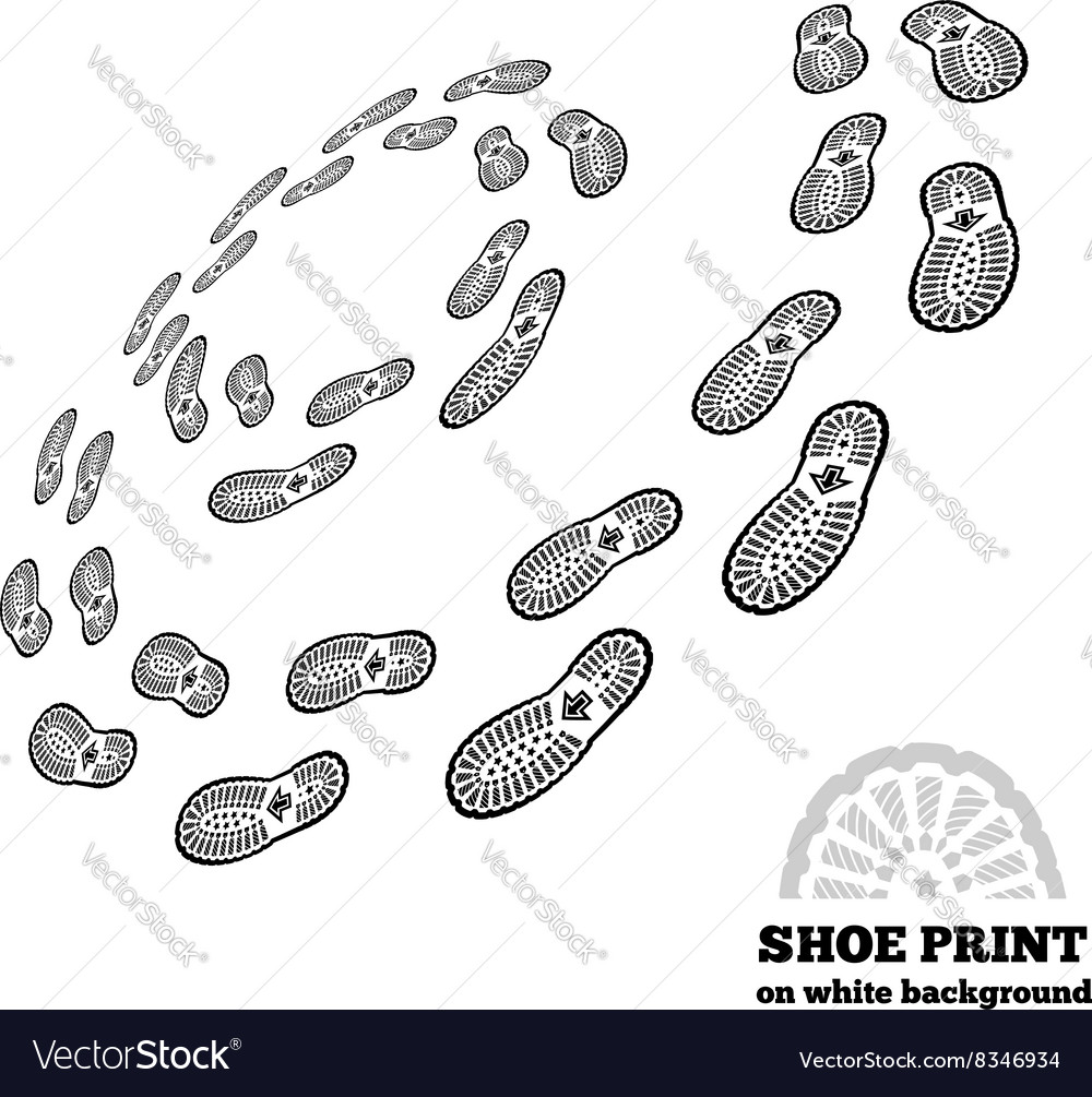 Shoe print on white vector image