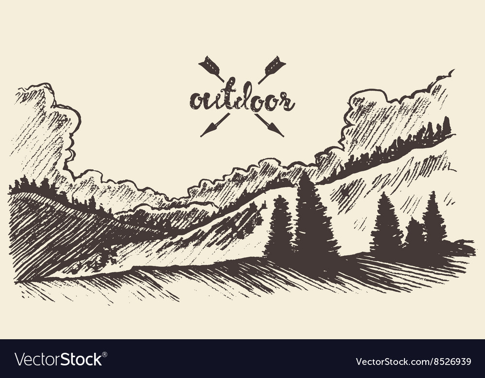 Drawn landscape forest clouds vector image