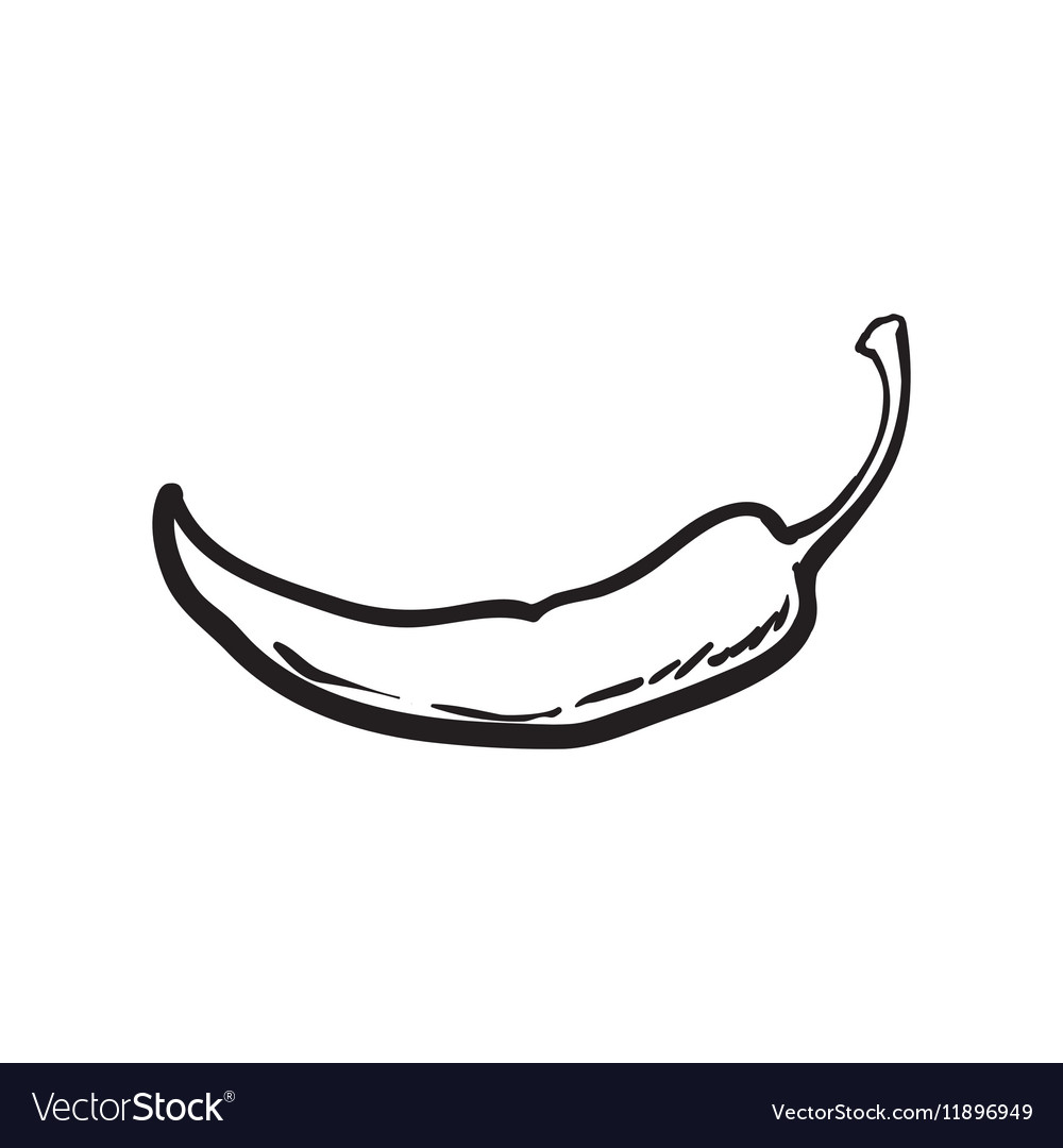 Hand drawn red hot chili pepper isolated on white