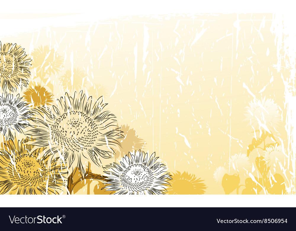 Hand Drawn Sunflower Background