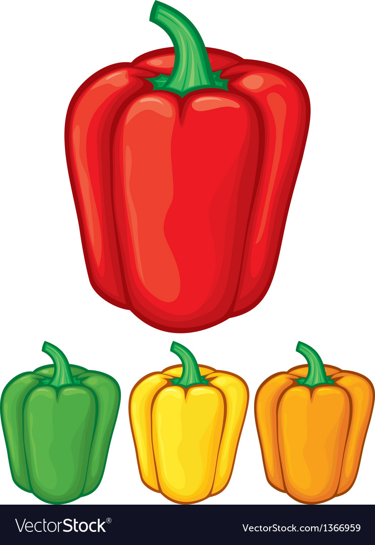 Sweet bell peppers vector image