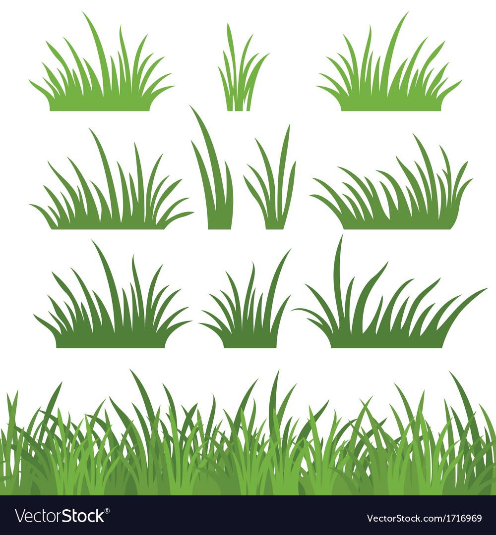 Green grass seamless and set
