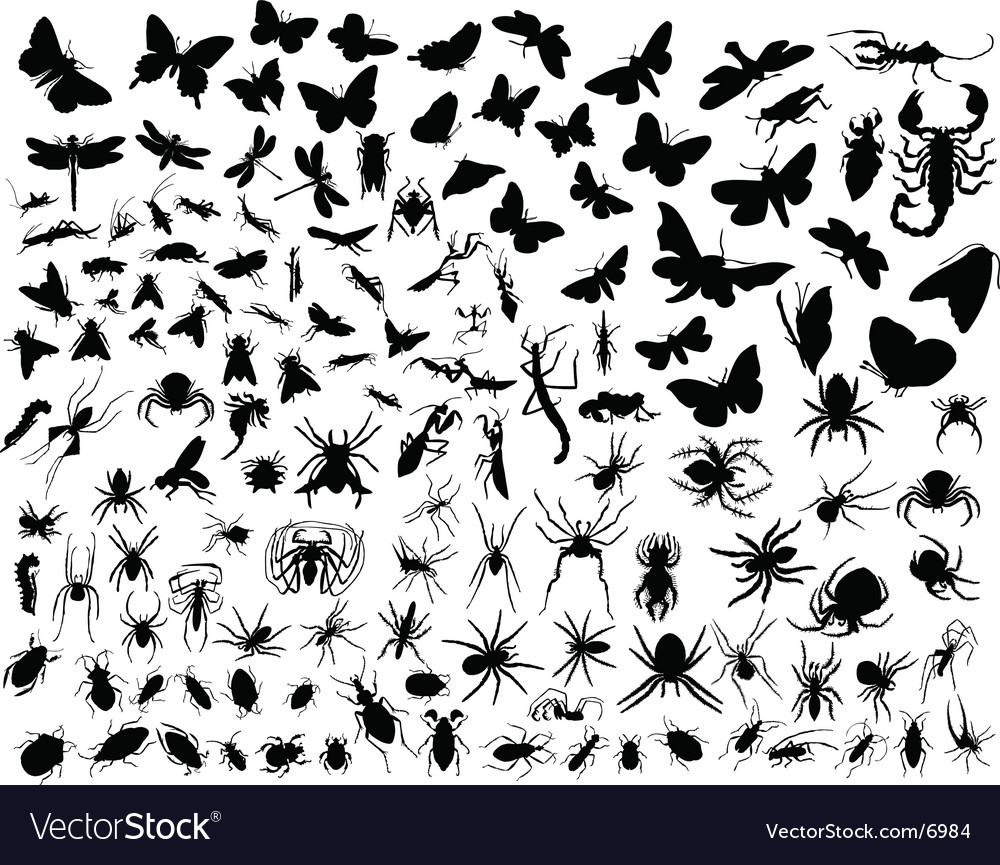 Insects silhouettes vector image
