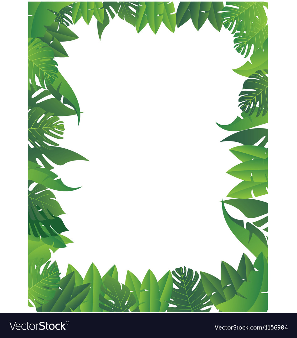 tropical leaf background royalty free vector image