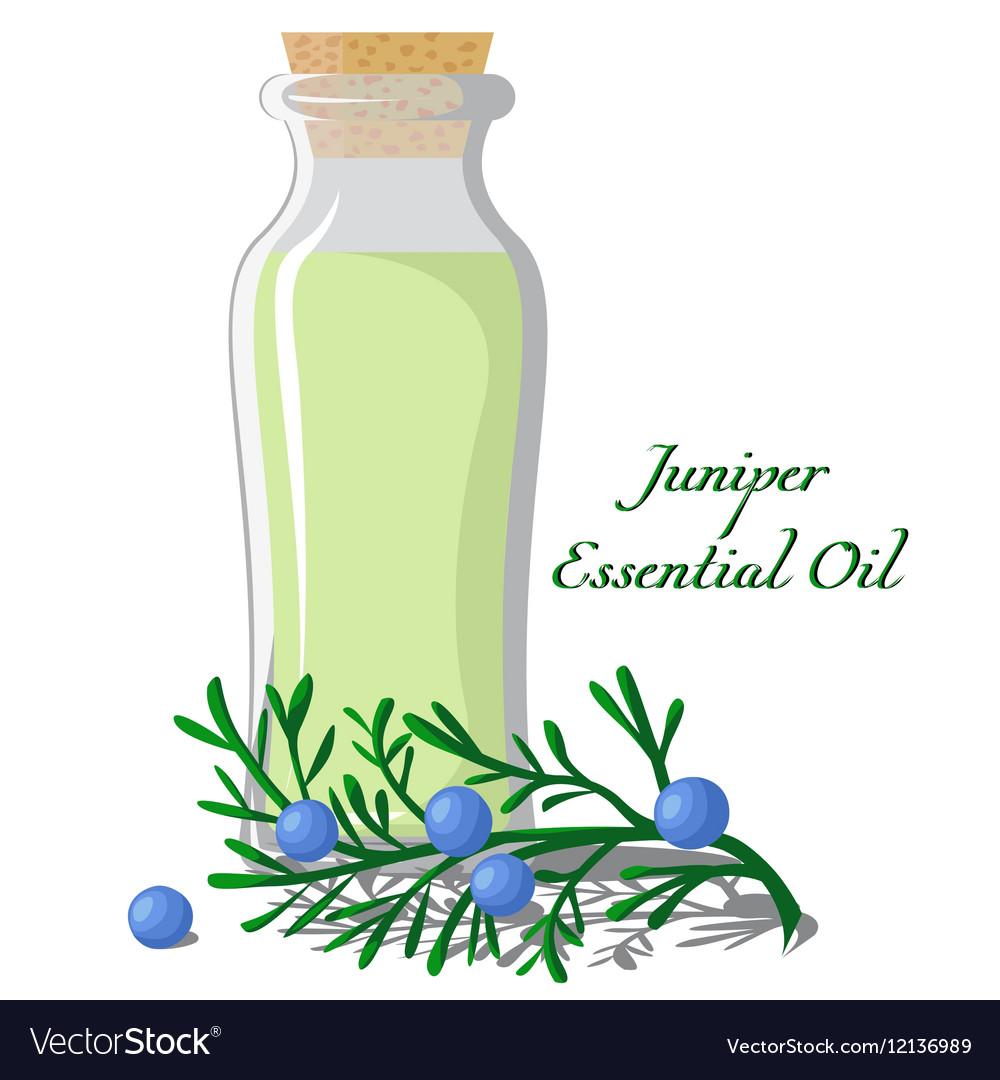 Essential oil of juniper