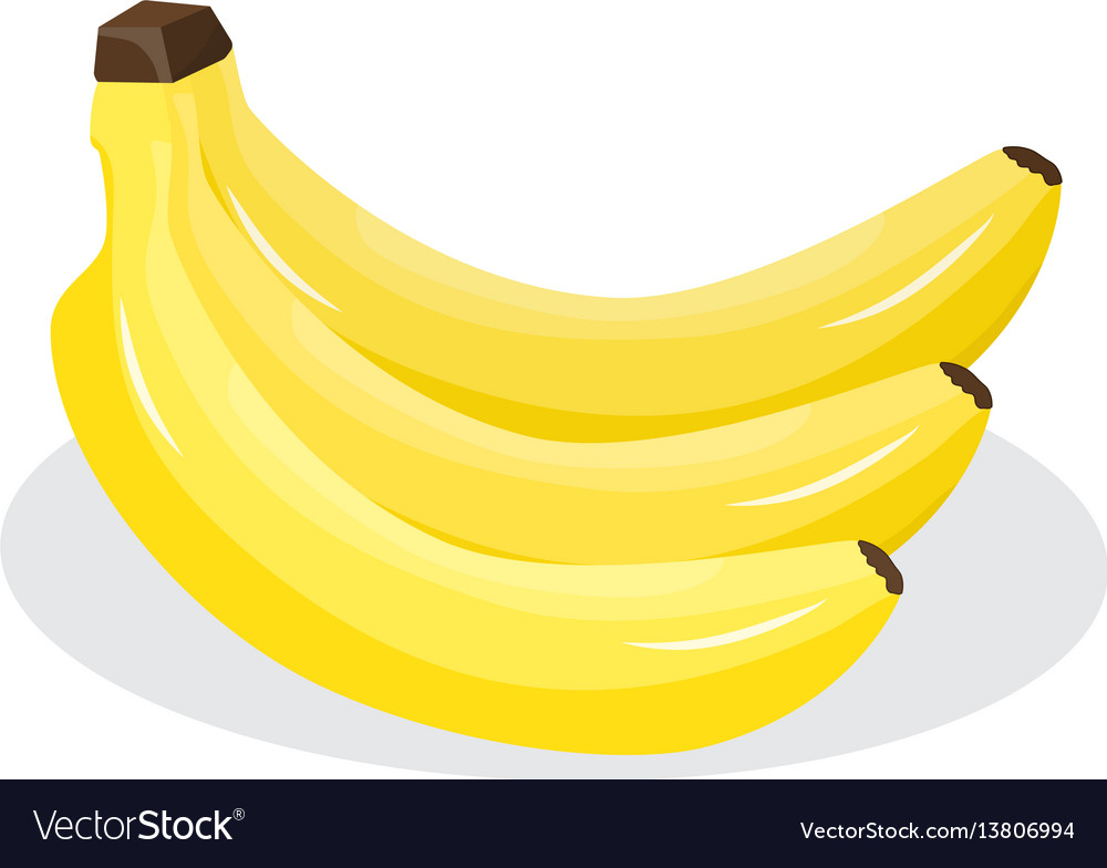 Fresh banana on white background vector image