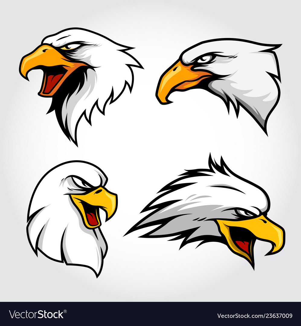 Collection of eagle hawk head mascot