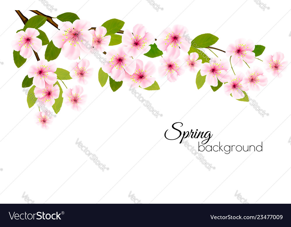 Spring nature background with a pink blooming